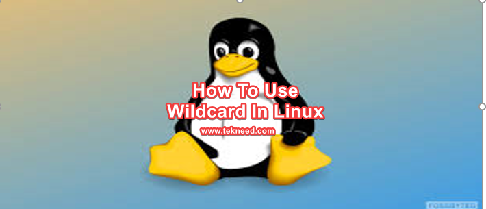 wildcard in Linux